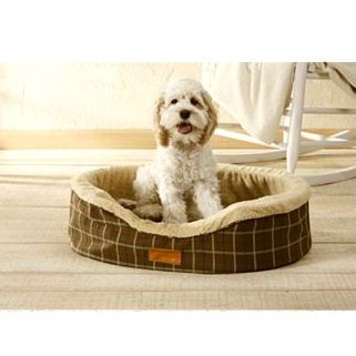 AKC Oval Dog Lounger