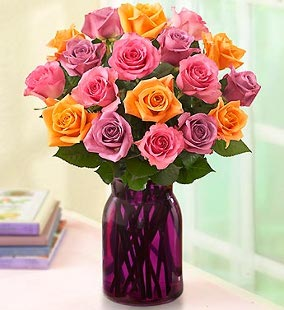Summer Sorbet Roses, 18 Stems