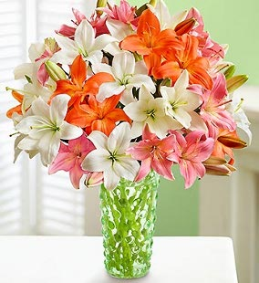 Vibrant Summer Lilies, 25-50 Blooms